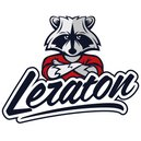 Leraton Очиститель-полироль пластика LERATON P1 SPORT 3,8л.