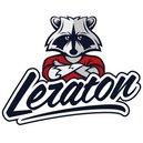 Leraton Щетка для чистки резины, дисков и подкрылок LERATON BR9