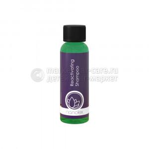 Nanolex Reactivating Shampoo - Высокотехнологичный консервант блеска ЛКП кузова автомобиля с гидрофобным эффектом.100 мл