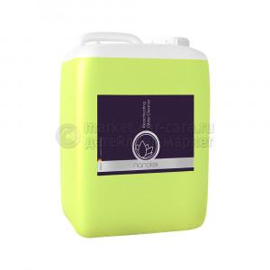 Очиститель-Консервант для Стёкол Nanolex Reactivating Glass Cleaner, 5000ml